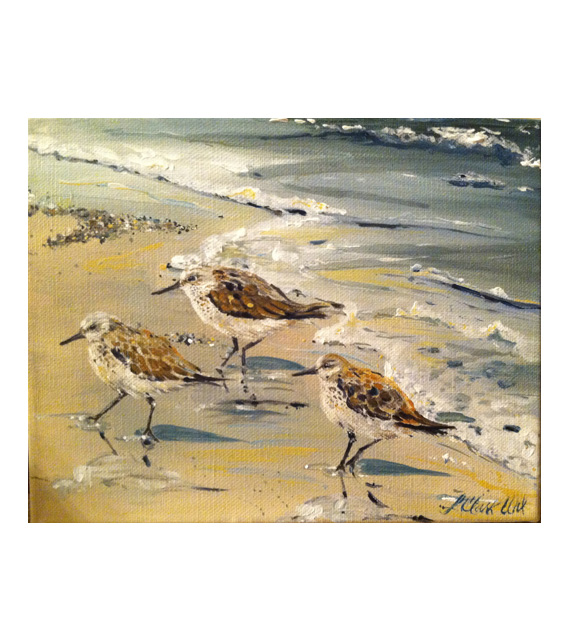 acrylic on canvas sandpipers