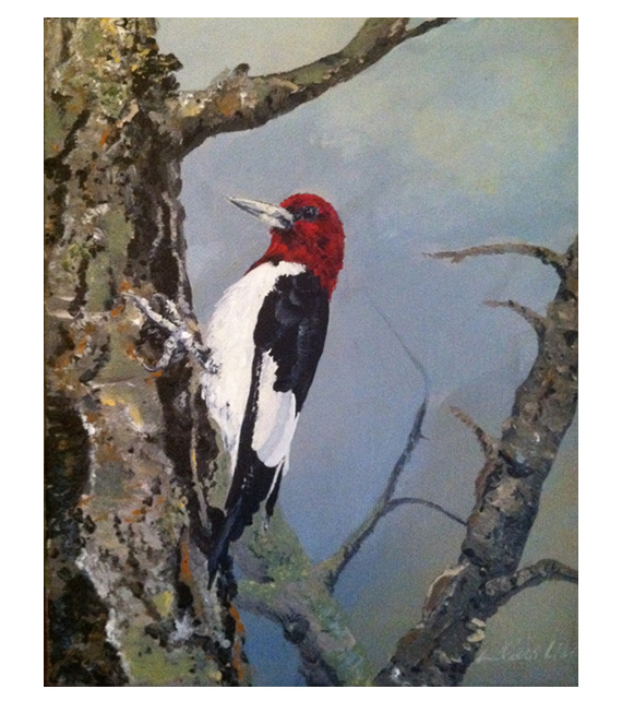 acrylic on canvas of red headed woodpecker